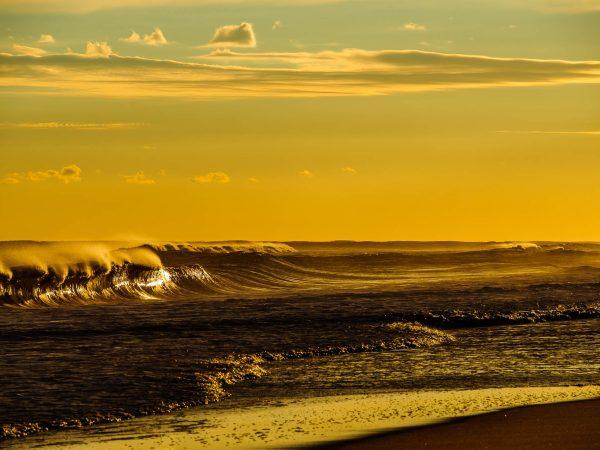 Montauk golden surf